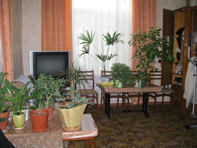 Аренда домов Бердянск
